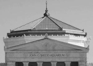 The John G. Shedd Aqarium