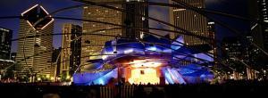 Chicago IL Millienium Park Pictures
