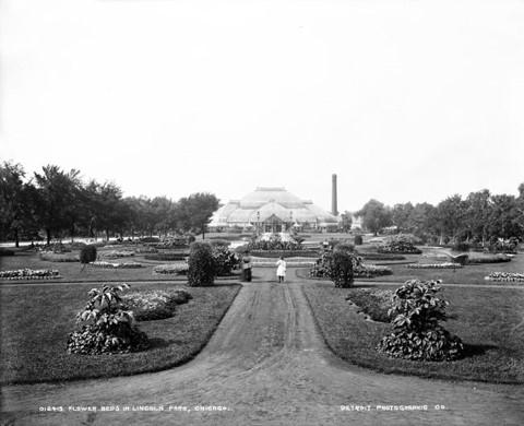 Marvelous Historical Chicago Photos